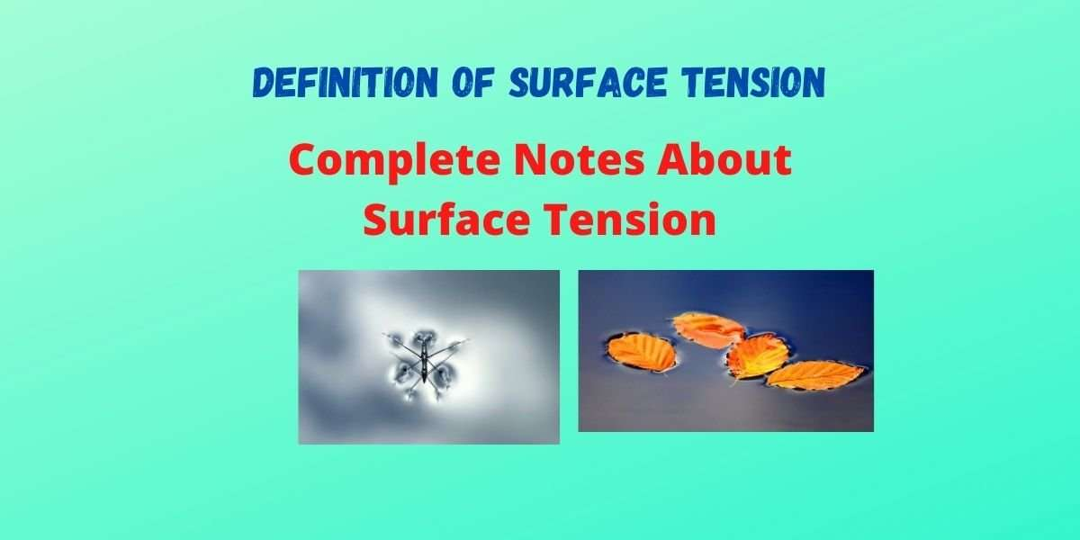 Definition of Surface Tension - Formula, Example & Effect