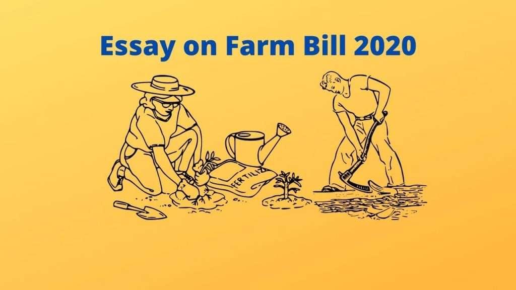 Essay on Farm Bill 2020